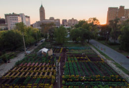 Michigan Urban Farm