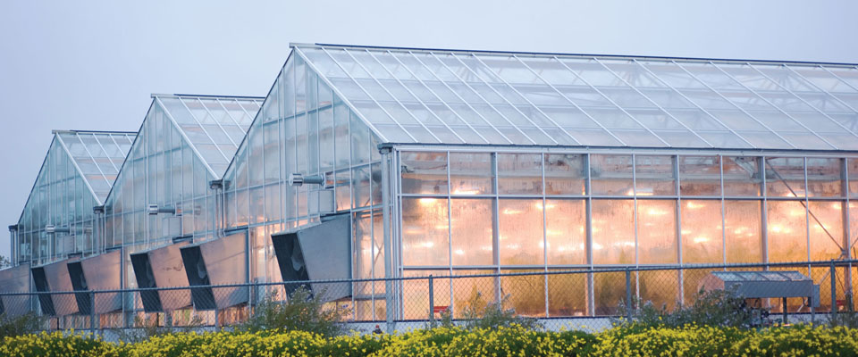 Growspan Greenhouse Structures