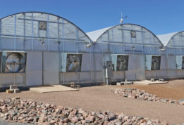 S1000 Polycar greenhouse