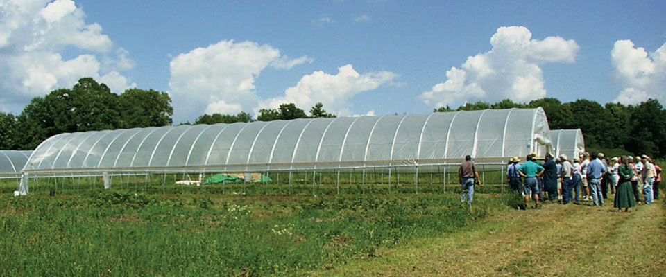 hoop greenhouses