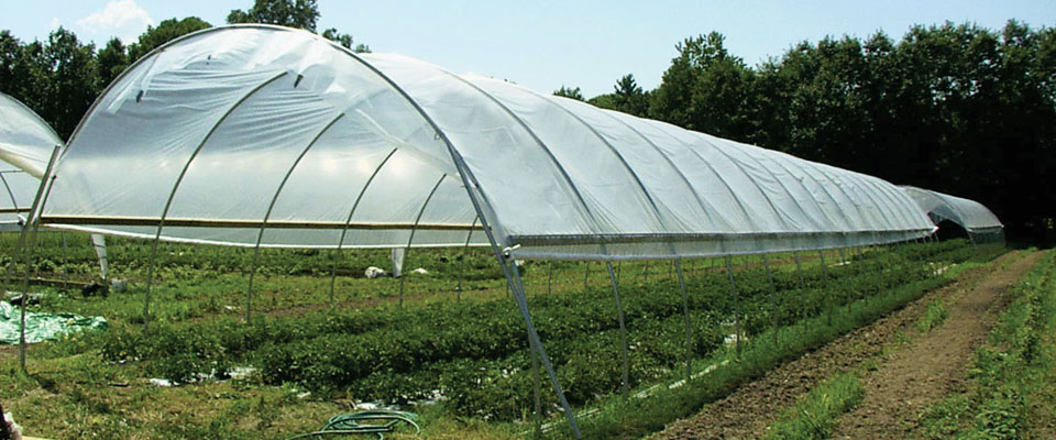 GrowSpan Round Economy High Tunnels