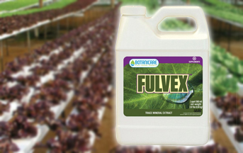hydroponics fertilizers
