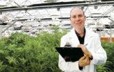 Ed Rosenthal Cannabis