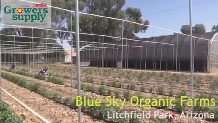 Blue Sky Organic Farms