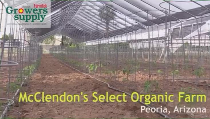 McClendon's Select Organic Farm