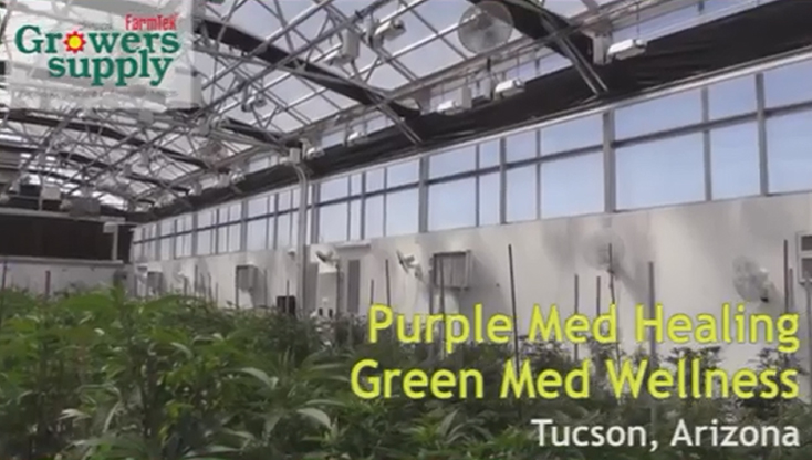 Customer Testimonial - Purple Med Healing and Green Med Wellness