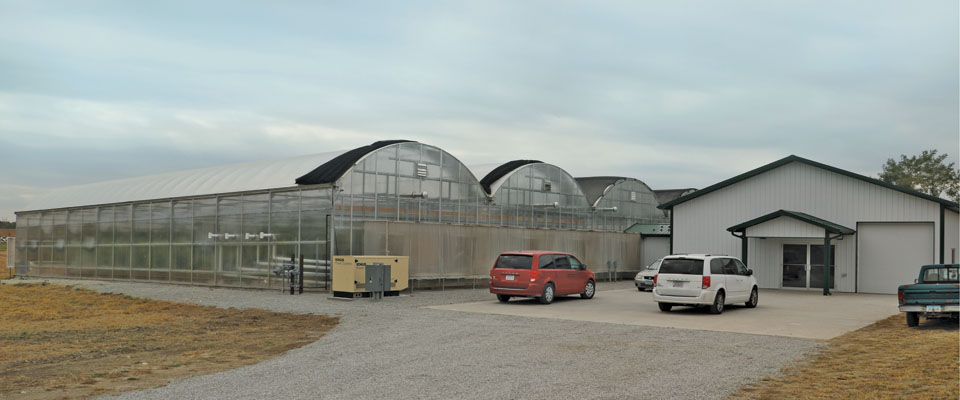 commercial greenhouse and metal building