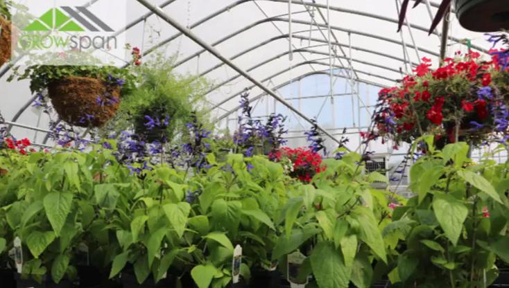 Hendon's Garden Center