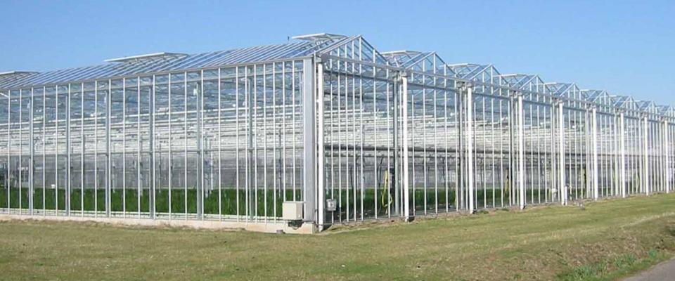 Growspan Now Offers Venlo Style Greenhouses Growspan