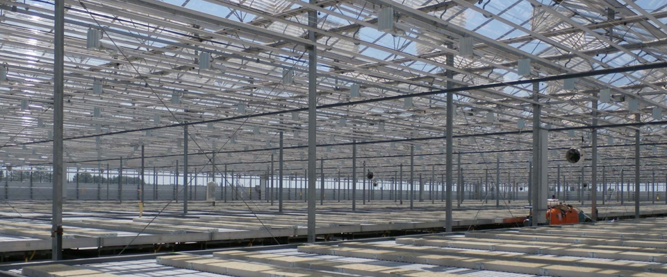 GrowSpan WideSpan Venlo Greenhouses