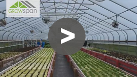 GrowSpan Cold Frame Greenhouse