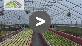 GrowSpan Cold Frame Greenhouse