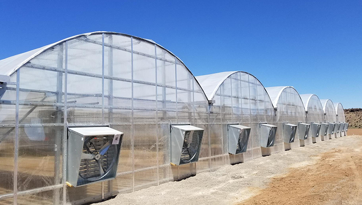 Hemp Growing - GrowSpan S1000 Greenhouse - Montrose, Colo.