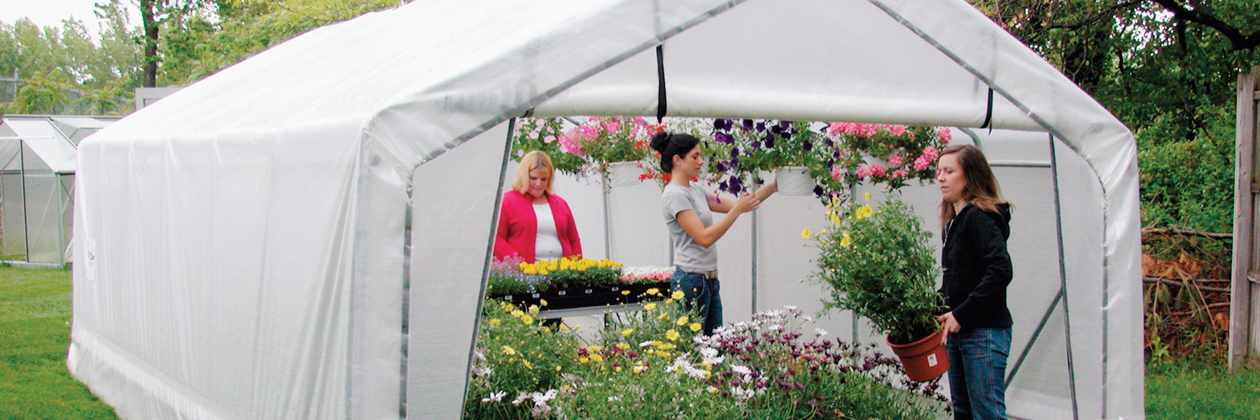Gothic Pro greenhouse