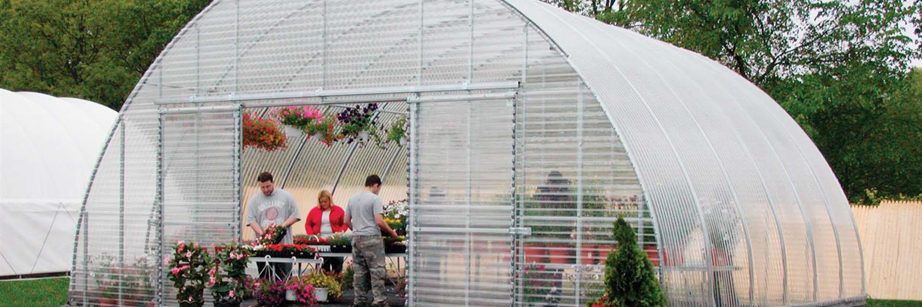 backyard greenhouse outside