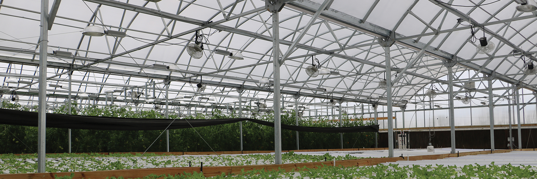 Ottumwa Greenhouse interior