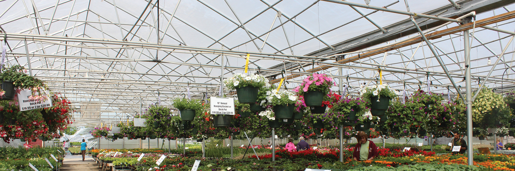 Flower Power Greenhouse