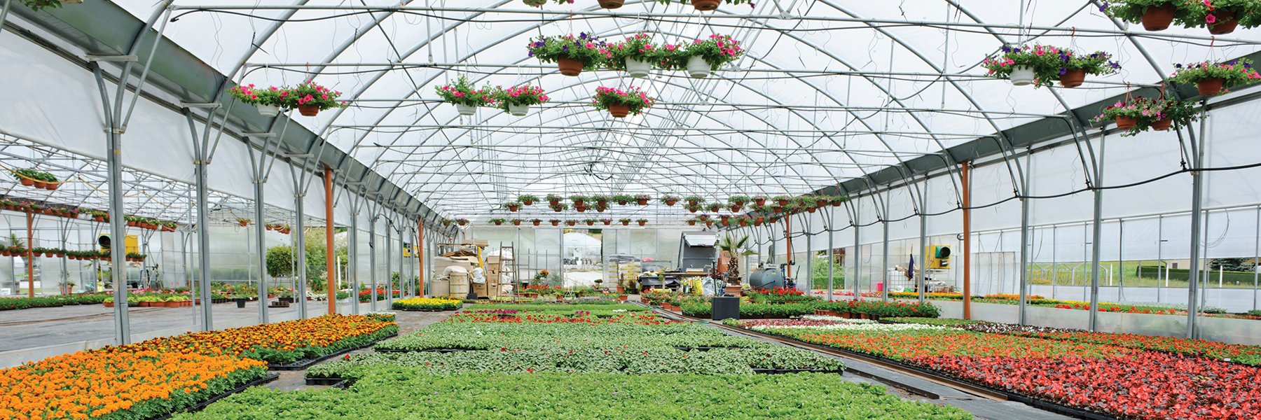 Floral Greenhouse