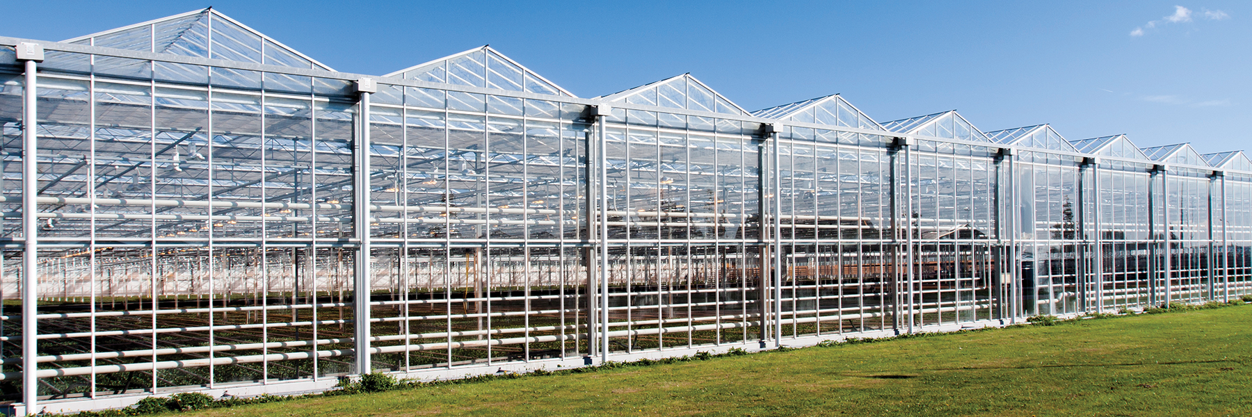 outside commercial greenhouse