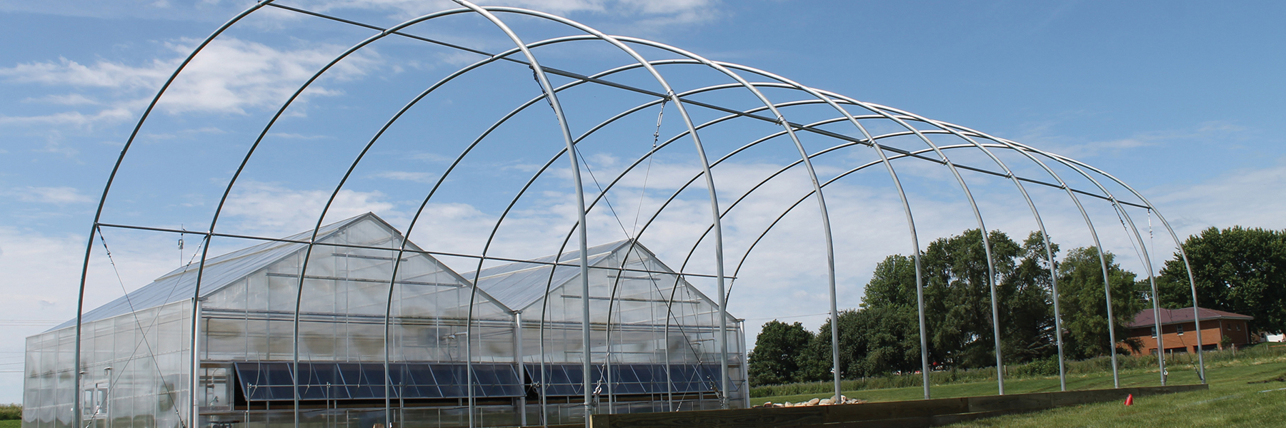 S500 tall cold frame