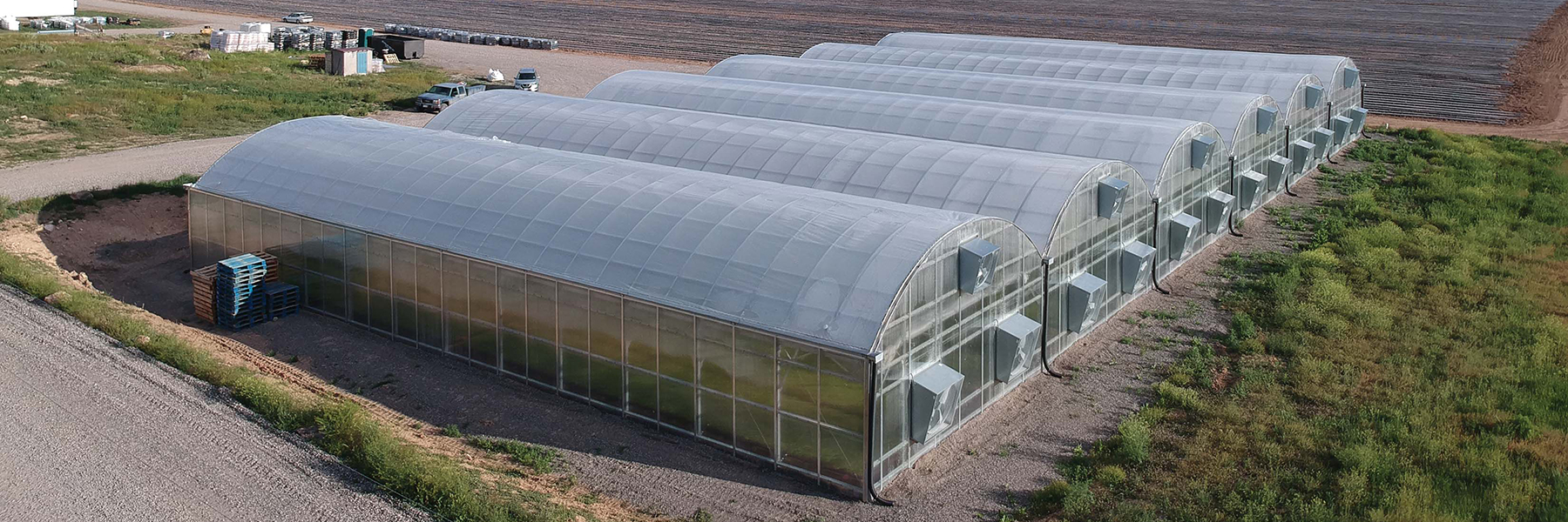 Blue Dog Hemp Greenhouse